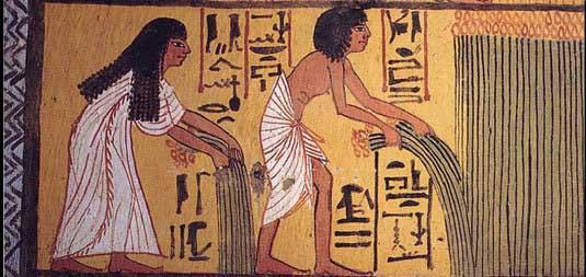 EgyptDiet2