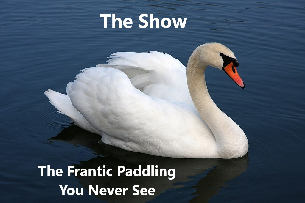 "A serene swan on a lake. ABove the swan, it says ""The Show."" Below the swan, it says, ""The Frantic Paddling You Never See."""